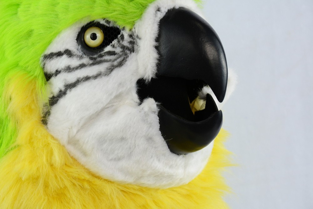 papagei maske schweiz